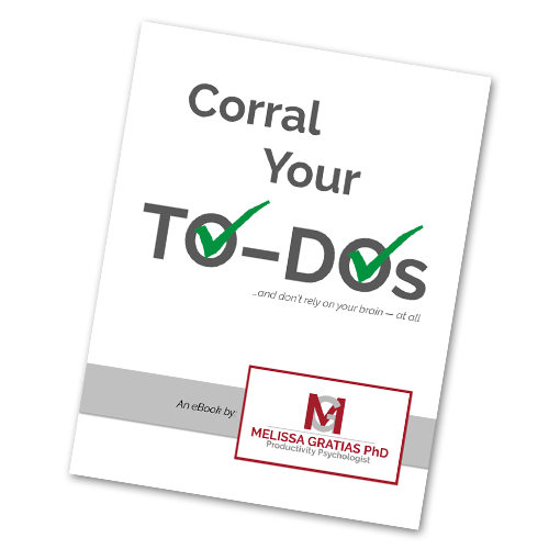 Corral To-Dos eBook
