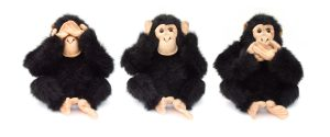 three-monkeys-1239552